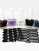 5PCS Scrub Matte Nail Polish Five Bottled  Random Give Two Zhang Hollow Template