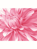 JAMMORY Mural Art Deco Wallpaper Contemporary Wall Covering,Canvas Yes Large Mural Big Pink Flowers Luxurious Atmosphere