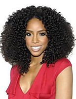 EVAWIGS Free Shipping  Brazilian Virgin Human Hair Kinky Curly Lace Front Wig