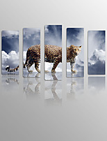 Blue Leopard on Canvas Wood Framed 5 Panels Ready to hang for Living Decor