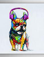 handgemaltes Ölgemälde Tier Hunde mit lila-Headset mit gestreckten Rahmen 7 Wand ARTS®