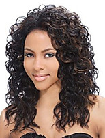 Evawigs Brazilian human virgin hair black lace front curly wig for black women