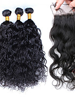 Brazilian Virgin Hair With Closure Brazilian Water Wave Lace Closure With Hair Bundles 4Pcs/Lot