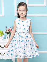 Girl's Cotton Butterfly Print  Flowers  Princess  Jumper Skirt  Lace Dress