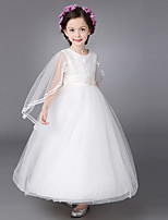 Ball Gown Ankle-length Flower Girl Dress - Cotton / Lace / Organza / Satin Short Sleeve Jewel with Bow(s) / Lace