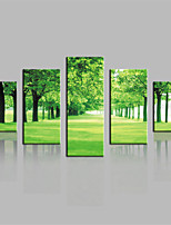 JAMMORY Canvas Set Landscape Modern,Five Panels Gallery Wrapped, Ready To Hang Vertical Print No Frame Green Tree