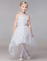 Ball Gown Chapel Train Flower Girl Dress-Rayon Sleeveless