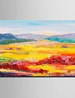 Mini Size E-HOME Oil painting Modern Color Fields Pure Hand Draw Frameless Decorative Painting