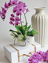 1Set Phalaenopsis Artificial Flower 58Cm 12Heads  Silk Flower Decoration Flower For Wedding Home