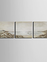 E-HOME® Stretched Canvas Art Coastal Scenery Decoration Painting  Set of 3