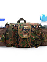 5 L Waist Bag/Waistpack Camping & Hiking Outdoor Waterproof / Multifunctional Army Green Nylon