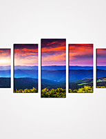 Canvas Set / Kehystämättömät Canvas-tulosta Maisema / Kukkakuvio/Kasvitiede Moderni / Realismi / Pastoraali,5 paneeli Kanvas Vaakasuora