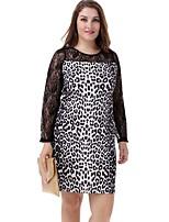 Women's Plus Size Sexy Lace Long Sleeve Leopard Print Mini Dress