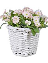 Seda Margaridas / Outras Flores artificiais