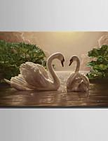 E-HOME® Stretched LED Canvas Print Art Two Swans LED Flashing Optical Fiber Print One Pcs