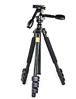 Qingzhuangshidai 4 parts contraction Aluminum alloy materialTake the weight of 6-10kgcamera tripod monopods