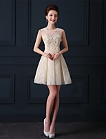Short / Mini Tulle Bridesmaid Dress A-line Jewel with Appliques