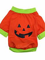 Gatti / Cani Costumi / Cappottini / T-shirt Verde / Arancione Estate / Primavera/Autunno Halloween Cosplay / Halloween