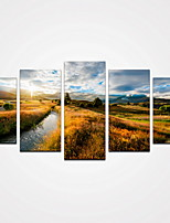 5 Panels Sunshine Mountain and Yellow Grass Canvas Print Modern Wall Art for Home Decor Unframed