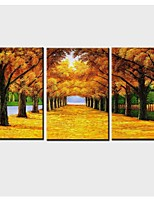 3 Panels Golden Mile  Canvas  Print Art for Livingroom Decoration Unframed