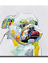 Pintada a mano Animal Modern / Clásico / Tradicional / Realismo / Mediterráneo / Pastoral / Estilo europeo,Un Panel LienzosPintura al