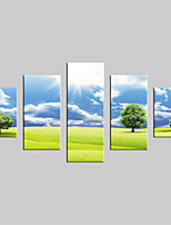 JAMMORY Canvas Set Landscape Modern,Five Panels Gallery Wrapped, Ready To Hang Vertical Print No Frame Grassland Scenery