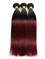 Straight Indian Human Hair Weave Extensions for Sale 3 Bundle 10