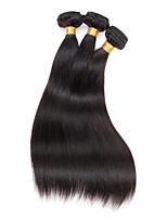 3 Peças Retas Tramas de cabelo humano Cabelo Malaio Tramas de cabelo humano Retas