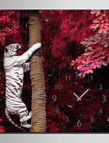 Moderno/Contemporáneo Animales Reloj de pared,Cuadrado Lienzo40 x 40cm(16inchx16inch)x1pcs/ 50 x 50cm(20inchx20inch)x1pcs/ 60 x