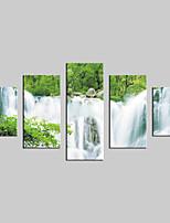lienzo conjunto Paisaje Modern,Cinco Paneles Lienzos Vertical lámina Decoración de pared