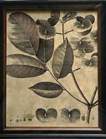 Lienzo de la lámina Naturaleza muerta Clásico / Estilo europeo,Un Panel Lienzos Vertical lámina Decoración de pared For Decoración