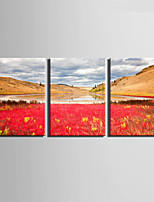 E-HOME® Stretched Canvas Art Lake And Color Fields Decoration Painting  Set Of 3