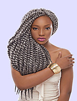 Grey Havana Twist Braids Hair Extensions 22inch Kanekalon 80g/pcs gram Hair Braids