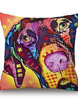 Cotton/Linen Pillow Cover,Animal Print / Graphic Prints Modern/Contemporary / Country / Casual