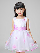 Girl's Casual/Daily Floral Dress,Cotton / Polyester All Seasons Blue / Pink