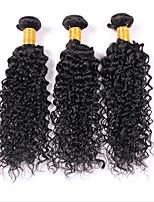 3 Stück Kinky Curly Menschliches Haar Webarten Malaysisches Haar Menschliches Haar Webarten Kinky Curly