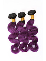 3 Pieces Ombre Purple Straight Virgin Human Hair Weaves Two Tones Remy Brazilian Human Hair Extensions Body Wave