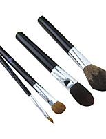 4 Makeup Brushes Set Goat Hair Portable Plastic Face ShangYang