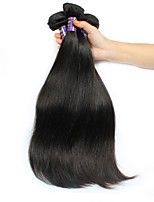 Brazilian Virgin Hair 3 Bundles Straight Protea Hair Products Brazilian Straight Hair Unprocessed  Virgin Straight Hair
