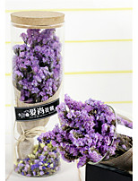 Wedding Flowers Free-form Lavenders Decorations Party/ Evening Dried Flower