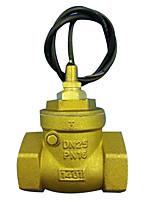 Interruptor de alimentación de corriente alterna material metálico instrumentos de medición física del color del oro