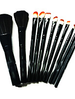 12 Makeup Brushes Set Others Portable Plastic Face Others
