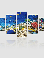 JAMMORY Canvas Set Landscape Modern,Five Panels Gallery Wrapped, Ready To Hang Vertical Print No Frame The Underwater