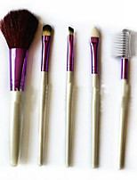 5 Makeup Brushes Set Nylon Portable Wood Face DANNI