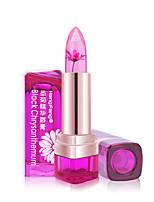 Bálsamo Labial Molhado Bálsamo Gloss  Translúcido Vermelho / Rosa / Transparentes 1 HengFang