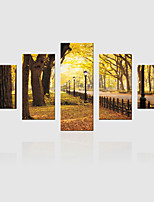 JAMMORY Canvas Set Landscape ,Five Panels Gallery Wrapped, Ready To Hang Vertical Print No Frame Castle Trees
