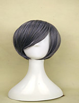Capless Popular Gray Wigs  Synthetic Short Straight  Hair Wig  for Woman's  Costume Wig