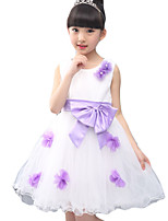 Girl's Casual/Daily Solid DressPolyester Summer Pink / Purple