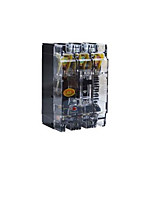 The Transparent Plastic Shell Breaker(Release Current Rating: 100 (A))