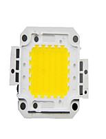 LED Ehite Light 50E Integrated Light Beads
